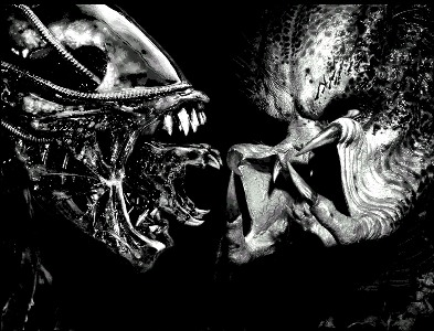 Alien Vs Predator : round 3